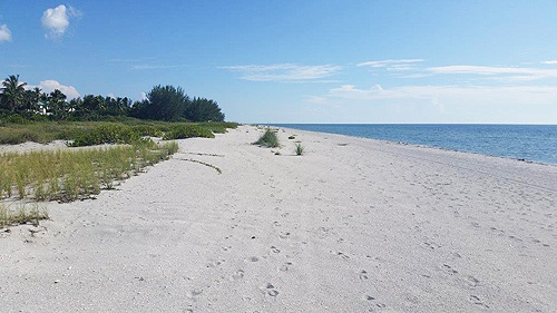 Sanibel & Captiva